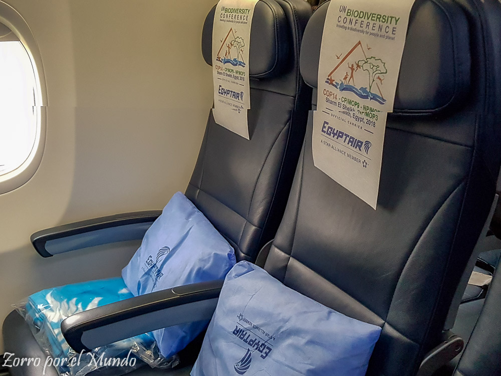 Asientos Egypt Air