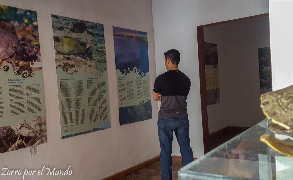 Museo de Poza Azul