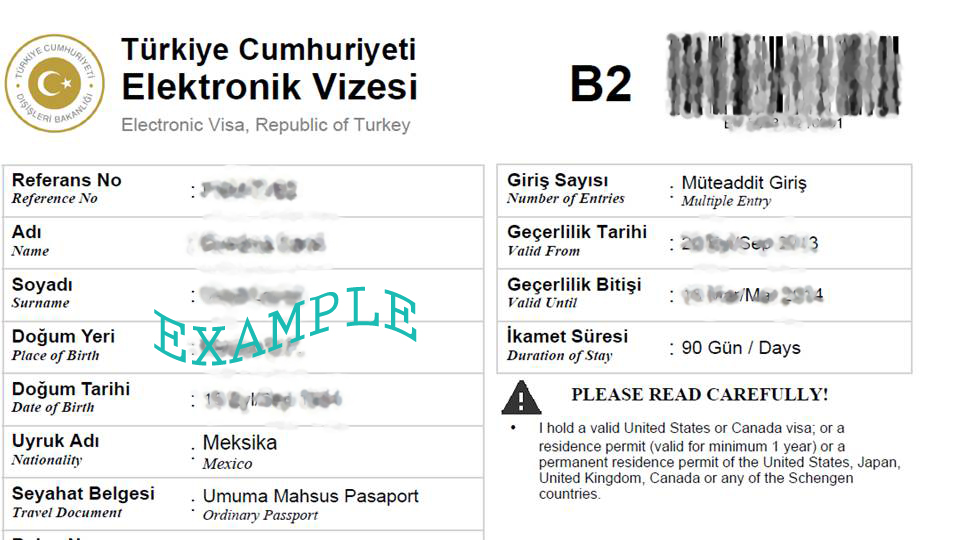 Se puede obtener visa electrónica de muchos países