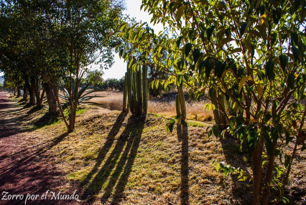 Camino alterno de Teotihuacán
