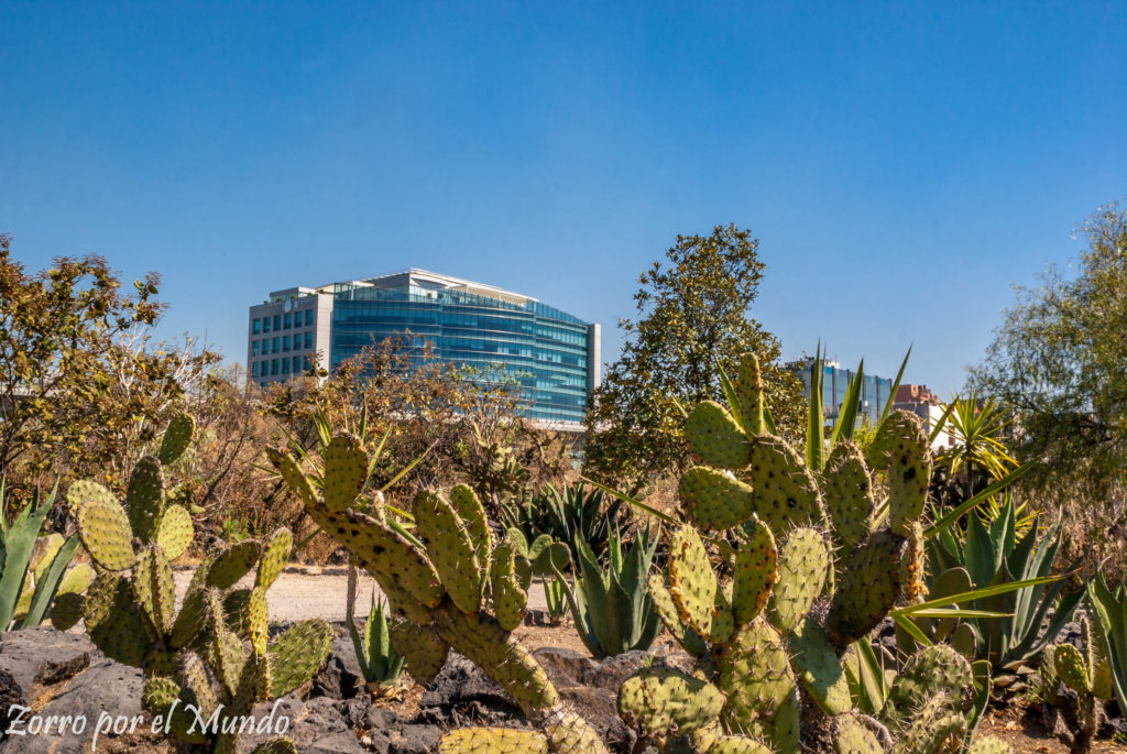 Vista del Sur de la Ciudad de México